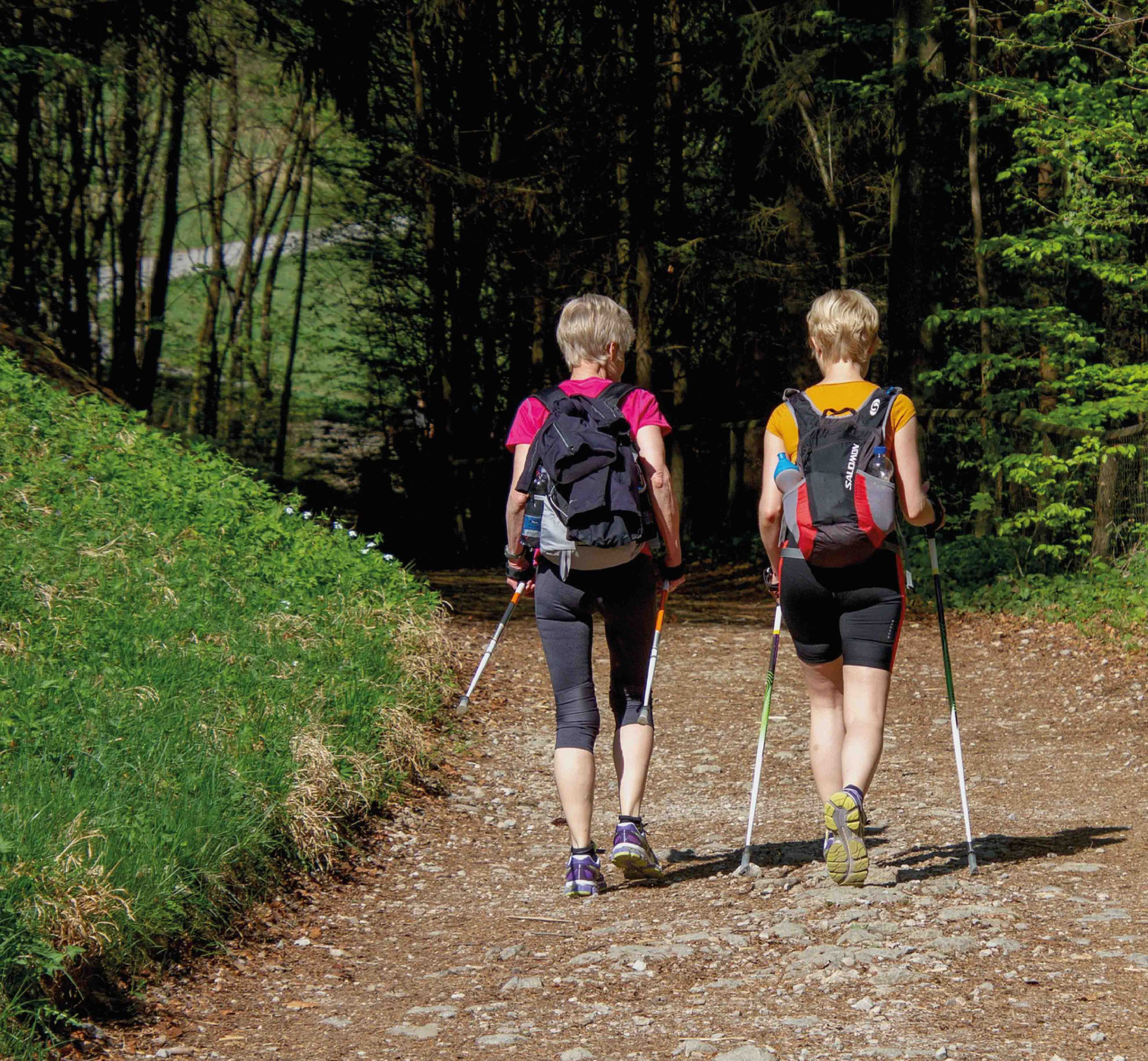 Outdoor: Nordic Walking
