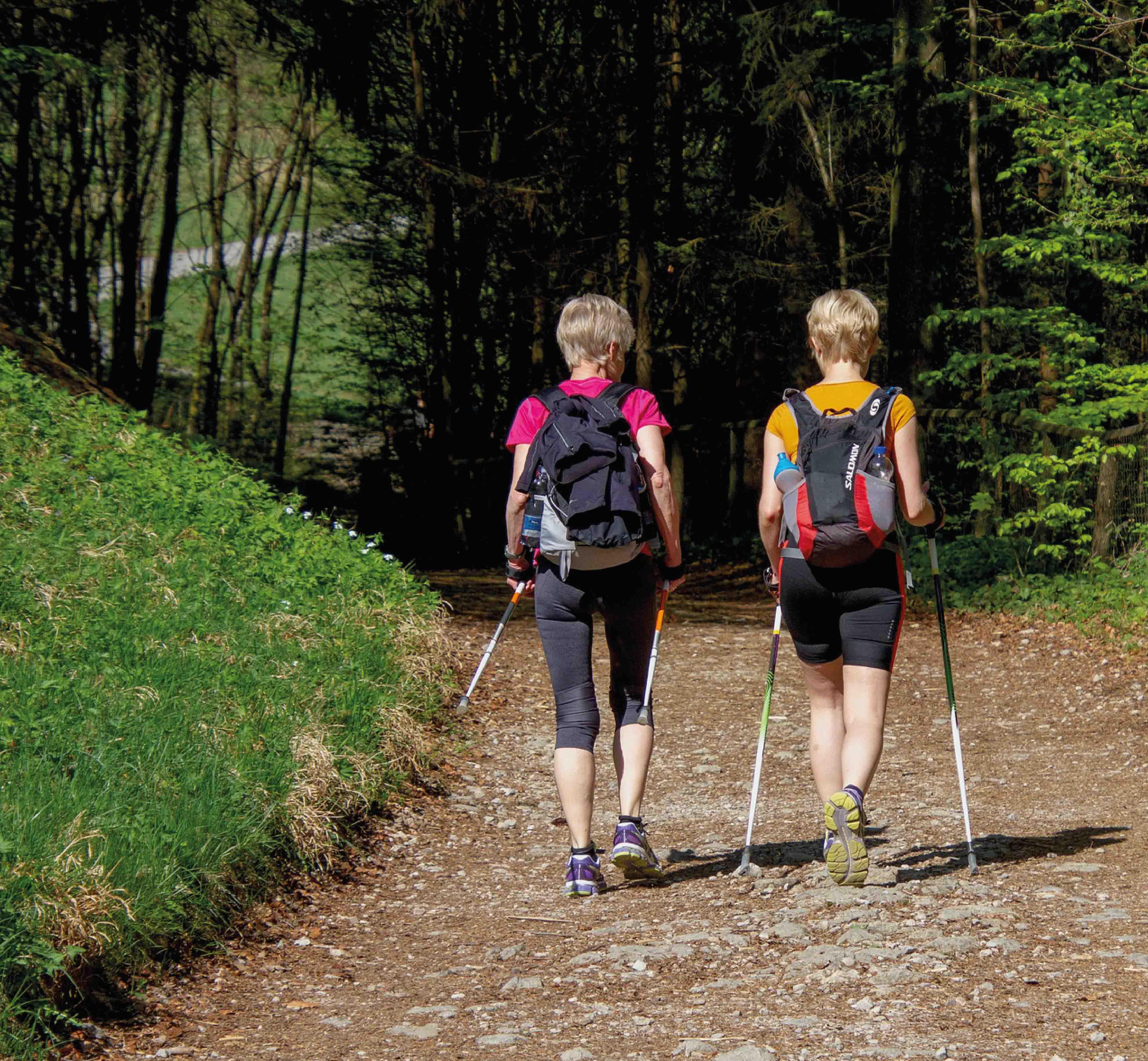 Nordic_Walking